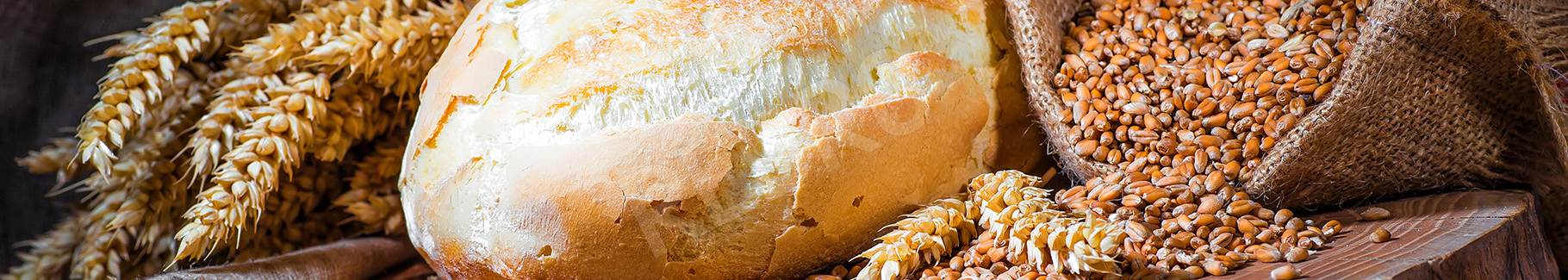 Fototapeta do kuchni chleb i zboża