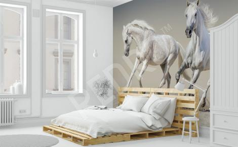 Fototapeta do sypialni białe konie