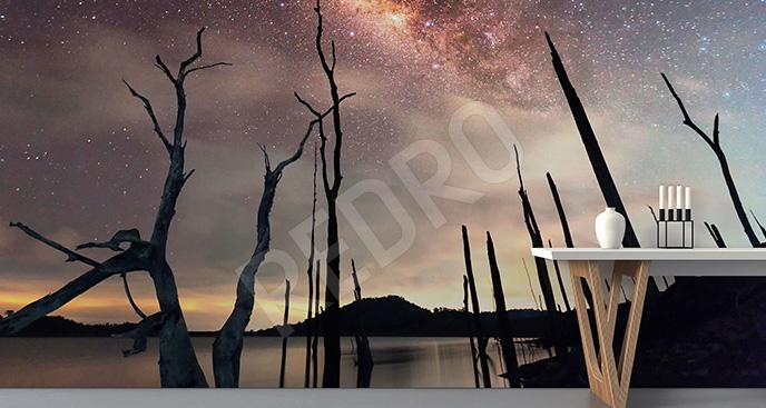 Fototapeta galaktyka i krajobraz