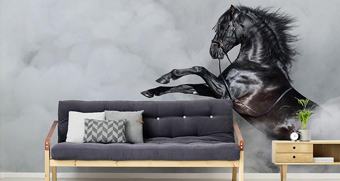 Fototapeta koń do jadalni