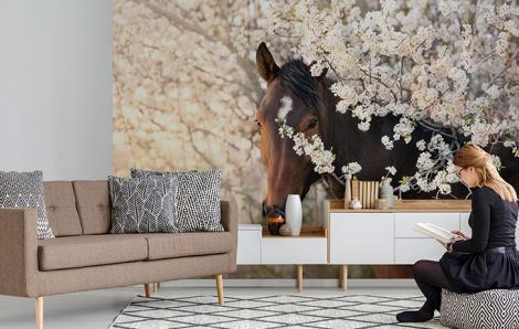 Fototapeta koń w kwiatach