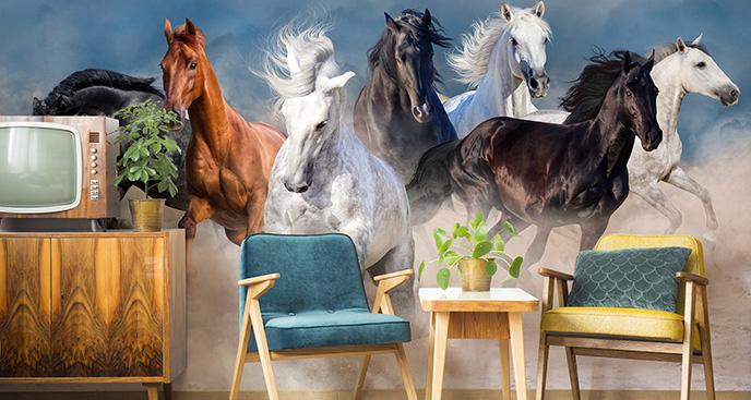 Fototapeta konie w pustynnym kurzu