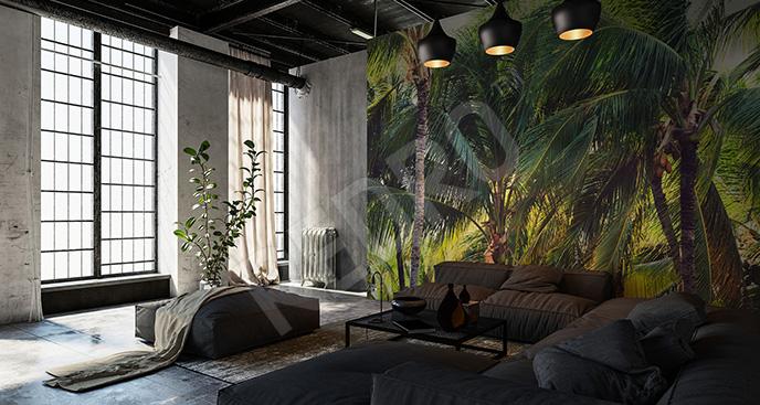Fototapeta krajobraz z palmami