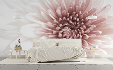 Fototapeta kwiat minimalistyczna