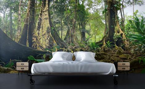 Fototapeta las tropikalny do sypialni