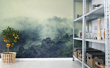 Fototapeta las tropikalny we mgle