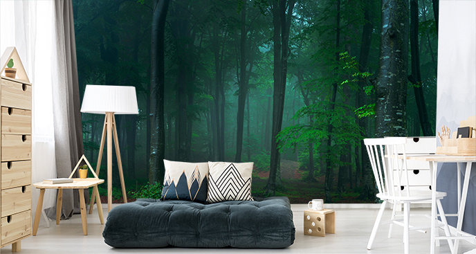 Fototapeta las w mglisty dzień