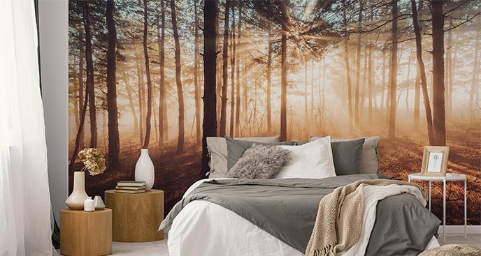 Fototapeta las we mgle w ciepłych tonach