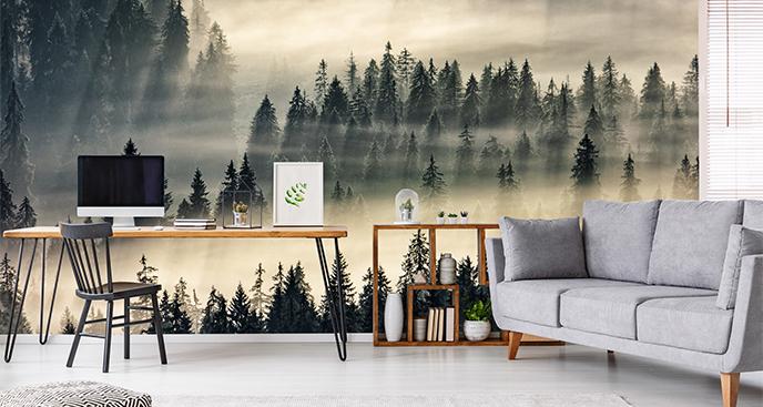 Fototapeta leśny pejzaż