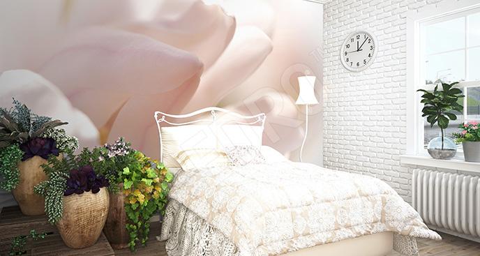 Fototapeta magnolia do sypialni