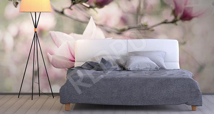 Fototapeta magnolie vintage