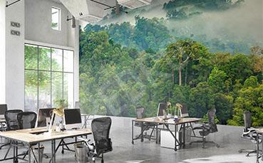 Fototapeta mgła w lesie tropikalnym