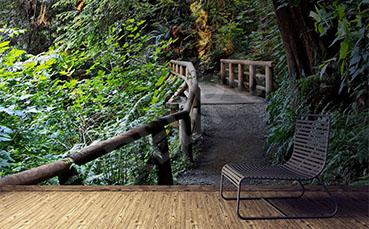 Fototapeta most w lesie tropikalnym