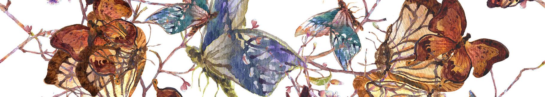 Fototapeta motyle wśród kwiatów