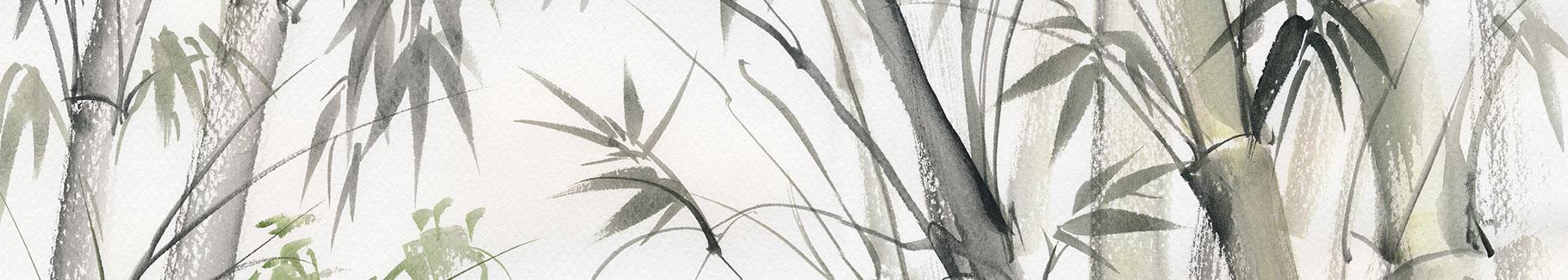 Fototapeta natura: bambusowy las