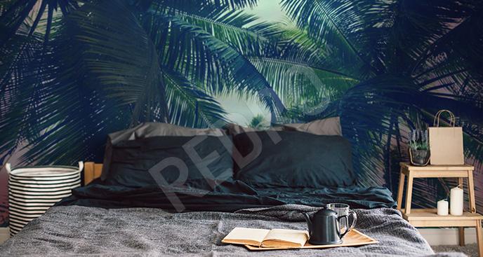 Fototapeta palmowe tło
