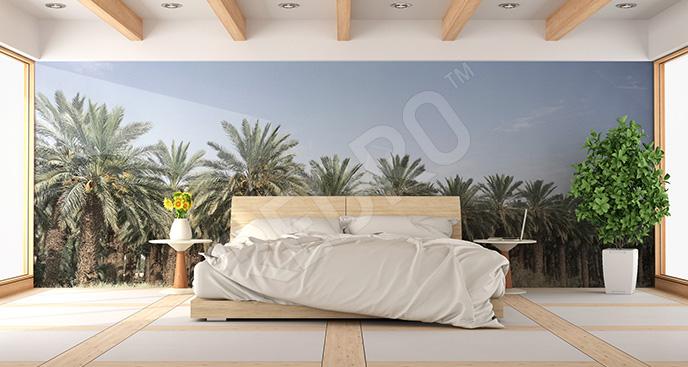 Fototapeta palmy do sypialni