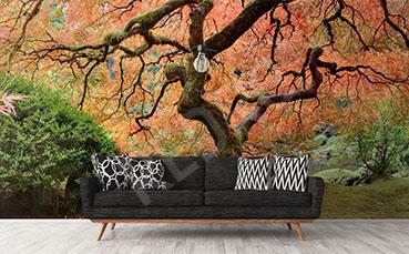 Fototapeta panorama z drzewem