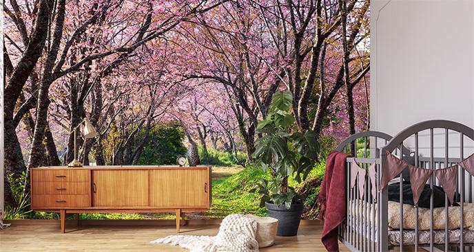 Fototapeta park wiosną