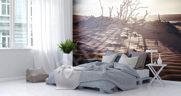 Fototapeta pustynia w słońcu