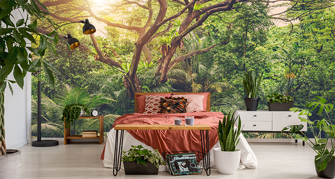 Fototapeta słońce w dżungli