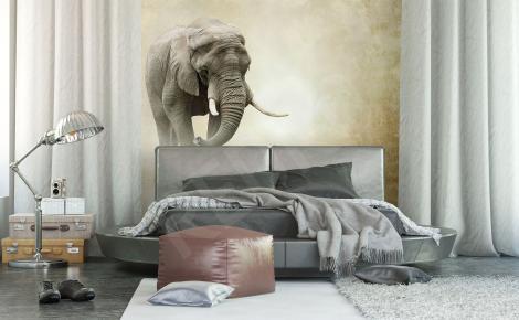Fototapeta słonie vintage