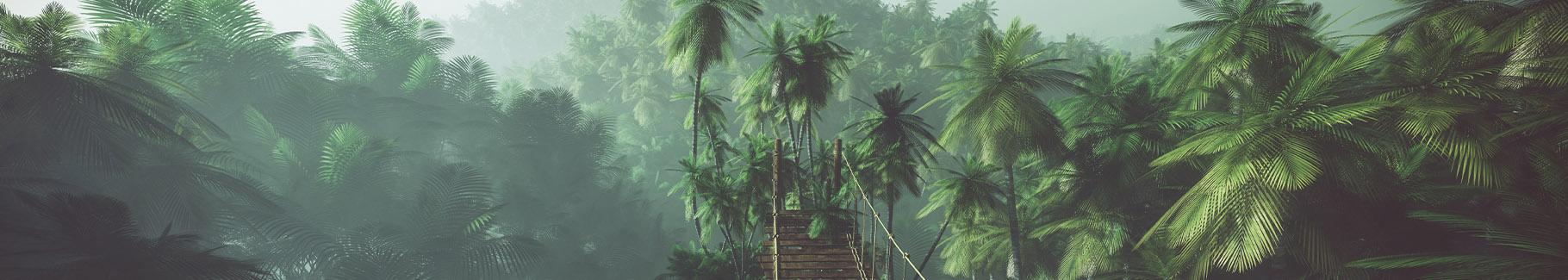 Fototapeta tropikalne palmy 3D