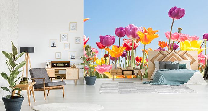 Fototapeta tulipany na łące