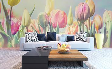 Fototapeta tulipany pastelowe