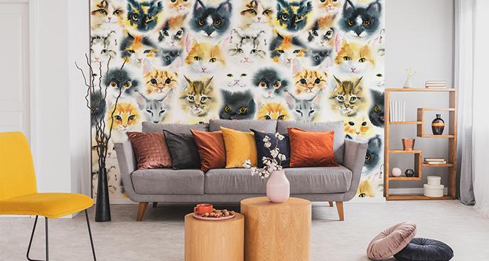Fototapeta wizerunki domowe zwierzęta