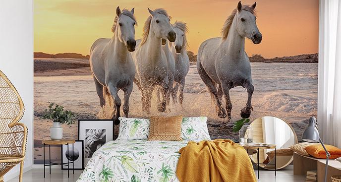 Fototapeta z koniem do salonu