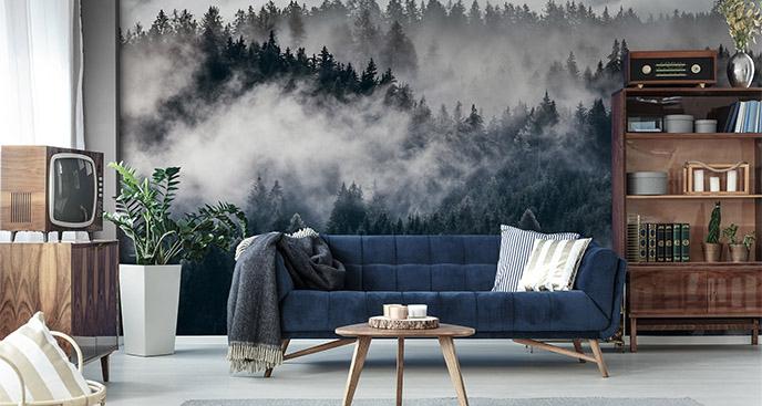 Fototapeta mgła nad drzewami