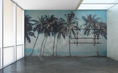 Fototapeta z palmami