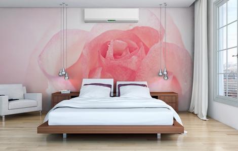 Fototapeta z różą do sypialni