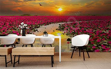 Fototapeta zachodzące słońce i kwiaty