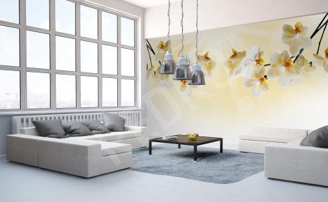 Fototapeta ze storczykiem do salonu