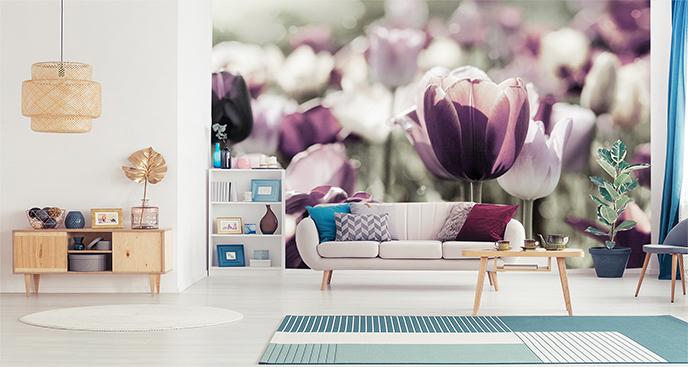 Fototapeta tulipany ogrodowe