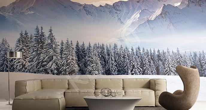 Fototapeta zima w górach