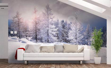 Fototapeta zimowy pejzaż do salonu