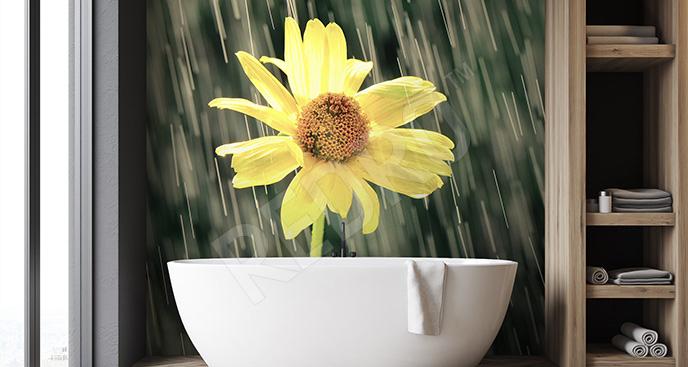 Fototapeta żółty kwiat