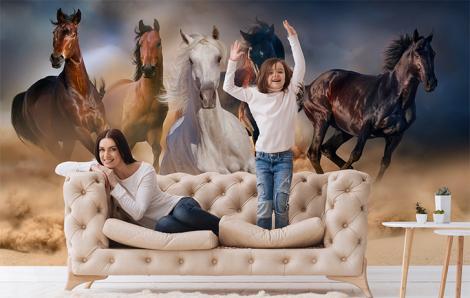 Fototapeta zwierzęta- konie