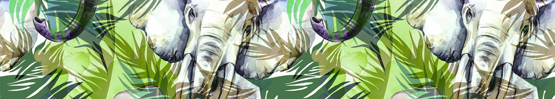 Fototapeta słonie w dżungli