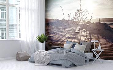Fotototapeta do sypialni z pustynią