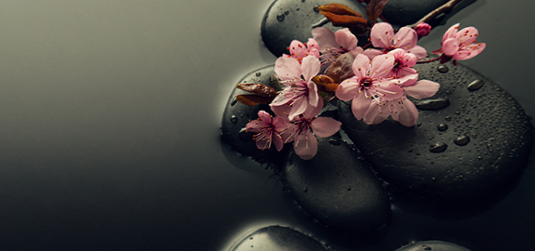 Kamienie i kwiaty