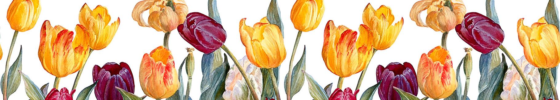 Kolorowa naklejka tulipany