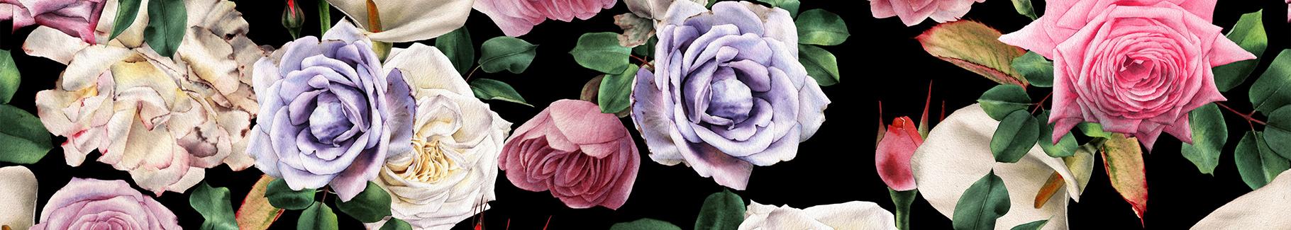 Obraz różana akwarela