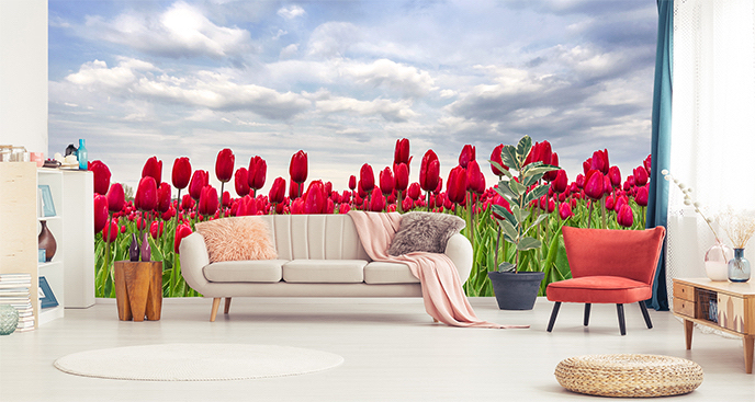 Kwiecista fototapeta tulipany