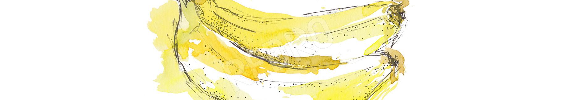 Naklejka banany malowane akwarelą
