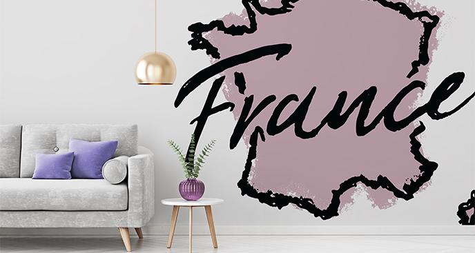 Naklejka kontury Francji