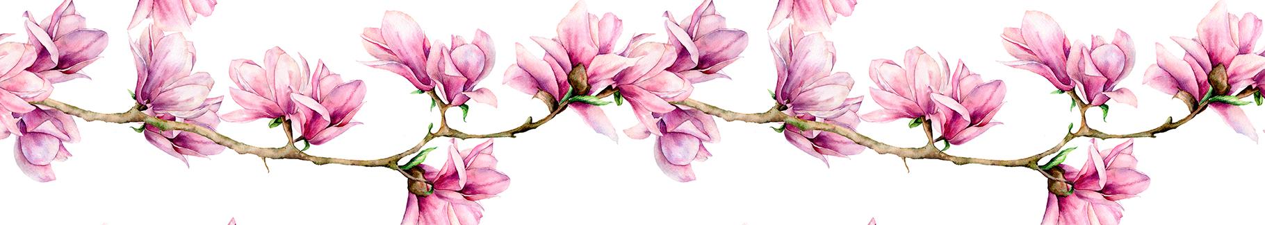 Naklejka magnolia na gałązce